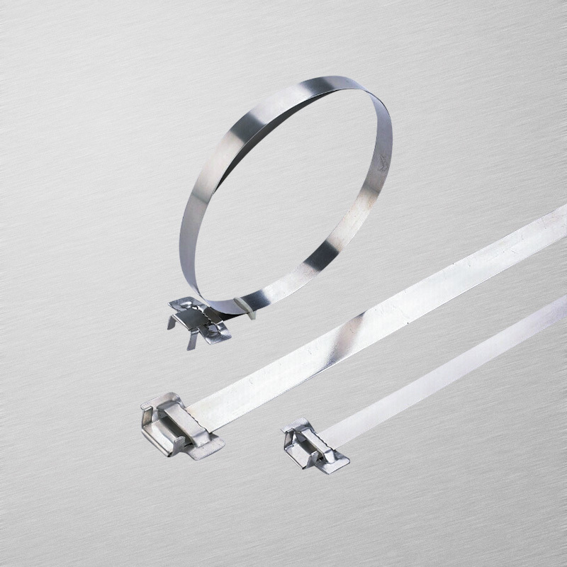Toothed buckle stainless steel cable tie